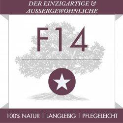 F14 der Einzigartige & Außergewöhnliche - Olivenholz-parkett.de